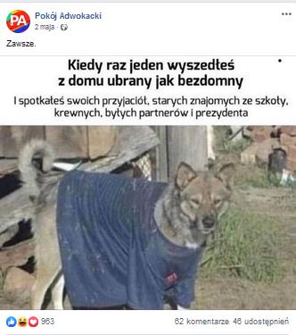 prawnicy lajkują posty ze zwierzętami